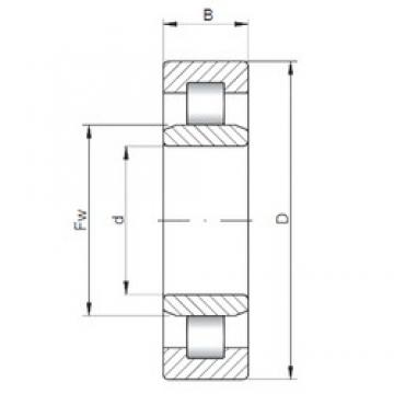 105 mm x 190 mm x 36 mm  ISO NU221 cylindrical roller bearings