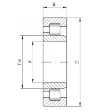 105 mm x 190 mm x 36 mm  ISO NJ221 cylindrical roller bearings