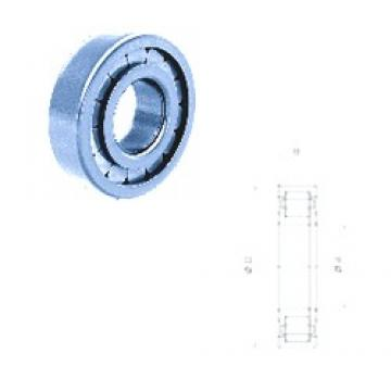 40 mm x 90 mm x 23 mm  Fersa NUP308FM/C3 cylindrical roller bearings
