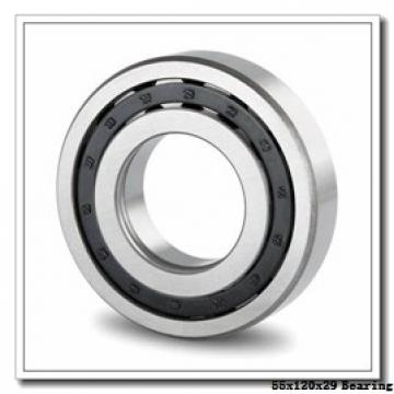 55 mm x 120 mm x 29 mm  ISO N311 cylindrical roller bearings